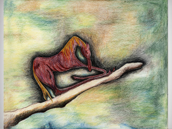 <span>Bird horse</span><i>→</i>