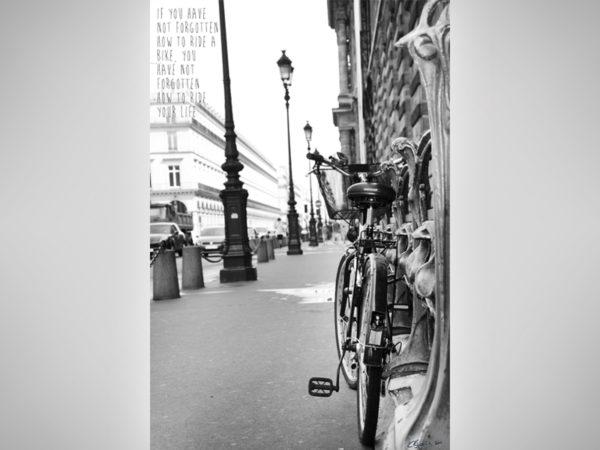 <span>Life ride</span><i>→</i>